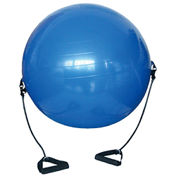 W4581PB  Gym ball with exercise tube 